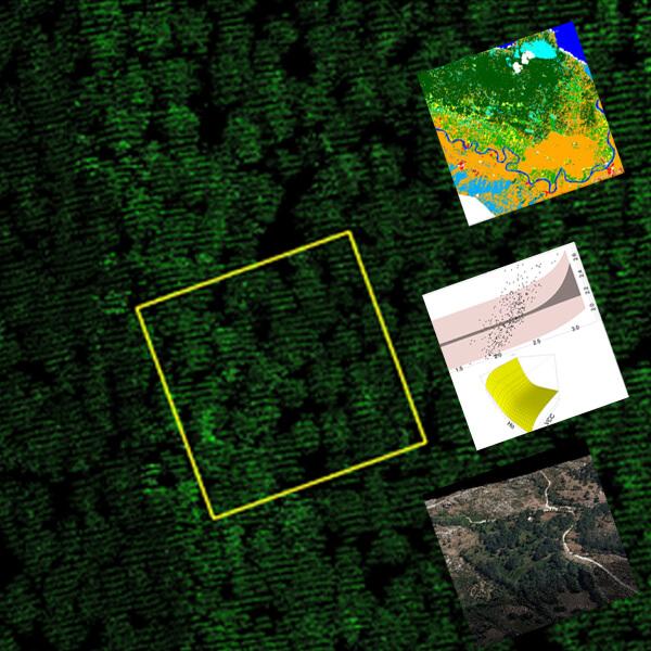 QGIS  y LIDAR en la evaluación de ecosistemas forestales. V Edicion