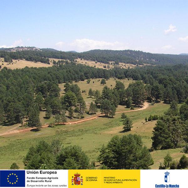 Actividades de formación Castilla La Mancha